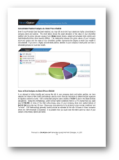 StockOpter Sample Reports- Personal Equity Compensation Profile PDF